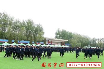 河北省高职单招第二大类知识点汇总